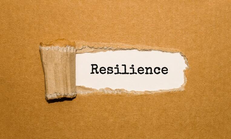 Organisational resilience